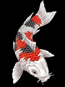 Tatuaże japońskie projekt ryby Koi