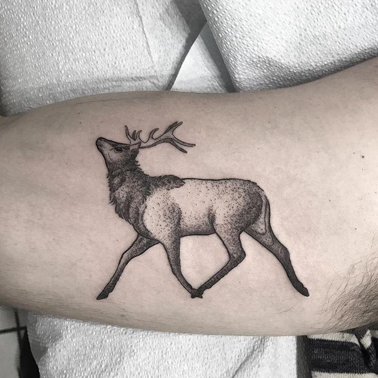 tatuaż jeleń